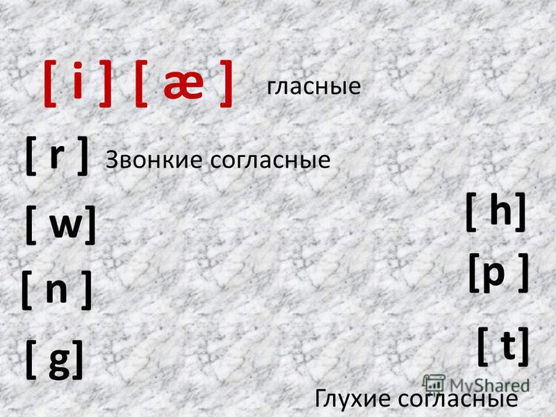 [ i ] [p ] [ n ] [ g] [ w] [ t] [ æ ] [ r ] [ h] гласные Звонкие согласные Глухие согласные