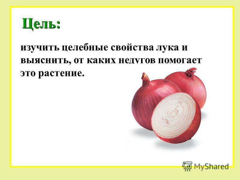 Цель: изучить целебные свойства лука и выяснить, от каких недугов помогает это растение.