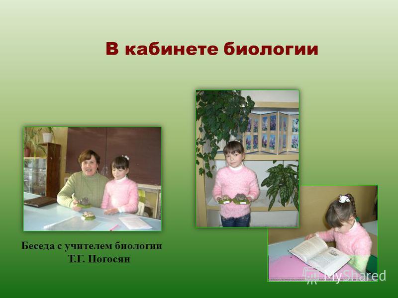 Беседа с учителем биологии Т.Г. Погосян В кабинете биологии