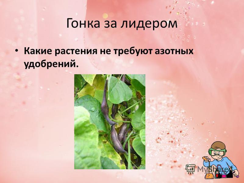 Гонка за лидером Какие растения не требуют азотных удобрений.