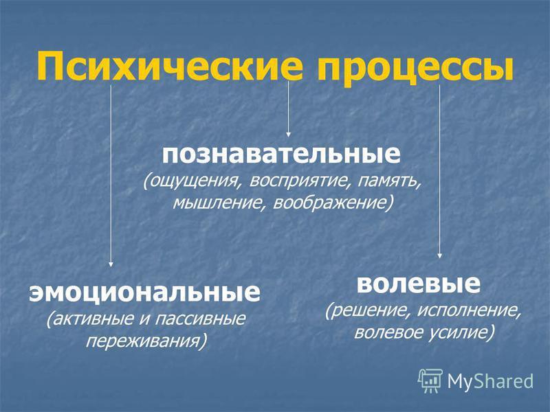 Психические процессы познавательные (ощущения, восприятие, память, мышление, воображение) эмоциональные (активные и пассивные переживания) волевые (решение, исполнение, волевое усилие)