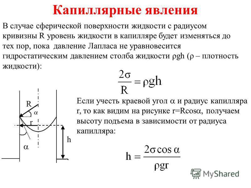 Капиллярные явления В случае сферической поверхности жидкости с радиусом кривизны R уровень жидкости в капилляре будет изменяться до тех пор, пока давление Лапласа не уравновесится гидростатическим давлением столба жидкости ρgh (ρ – плотность жидкост