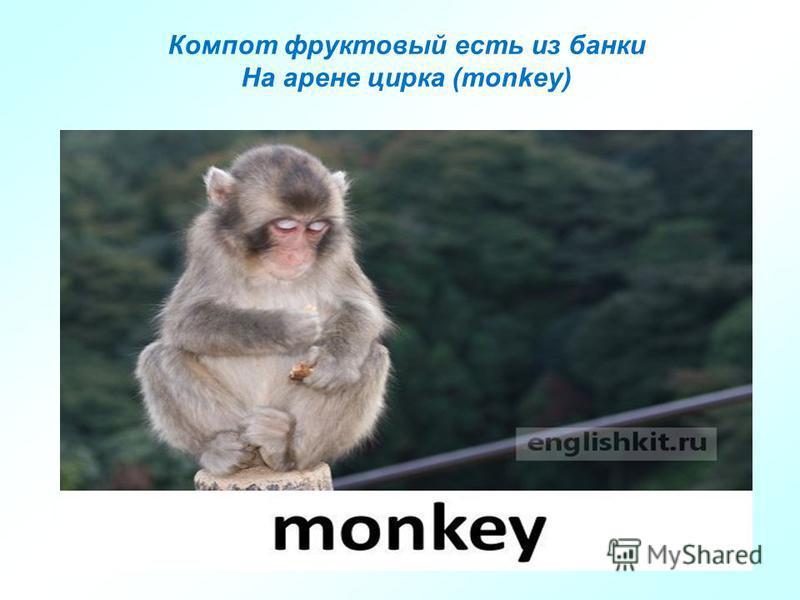 Компот фруктовый есть из банки На арене цирка (monkey)
