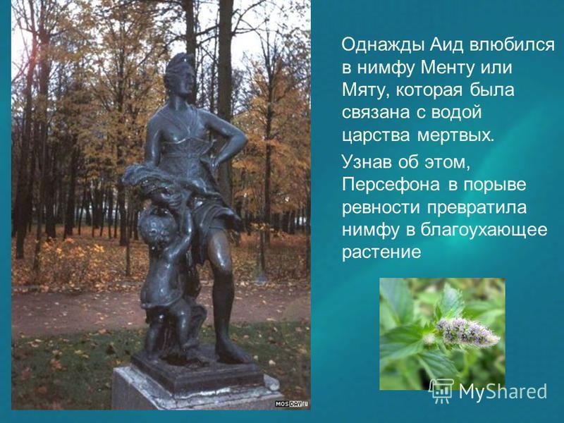 Однажды Аид влюбился в нимфу Менту или Мяту, которая была связана с водой царства мертвых. Узнав об этом, Персефона в порыве ревности превратила нимфу в благоухающее растение