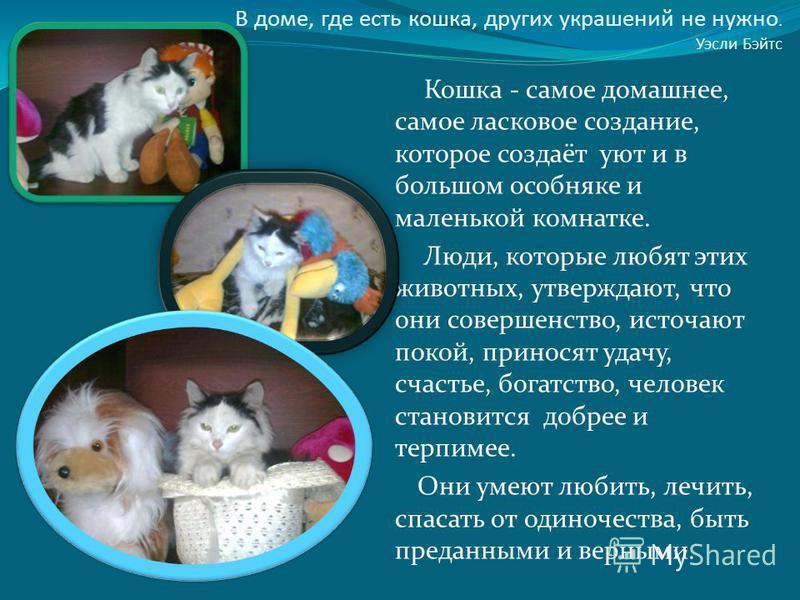 В доме, где есть кошка, других украшений не нужно. Уэсли Бэйтс Кошка - самое домашнее, самое ласковое создание, которое создаёт уют и в большом особняке и маленькой комнатке. Люди, которые любят этих животных, утверждают, что они совершенство, источа