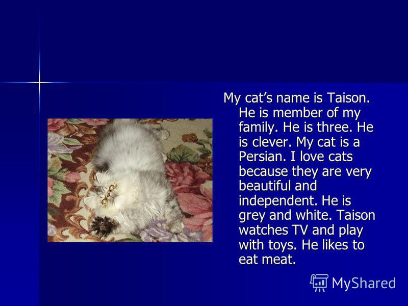 My cats name is Taison. He is member of my family. He is three. He is clever. My cat is a Persian. I love cats because they are very beautiful and independent. He is grey and white. Taison watches TV and play with toys. He likes to eat meat.