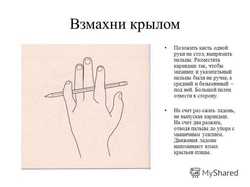 Взмахни крылом Положить кисть одной руки на стол, выпрямить пальцы. Разместить карандаш так, чтобы мизинец и указательный пальцы были на ручке, а средний и безымянный – под ней. Большой палец отвести в сторону. На счет раз сжать ладонь, не выпуская к