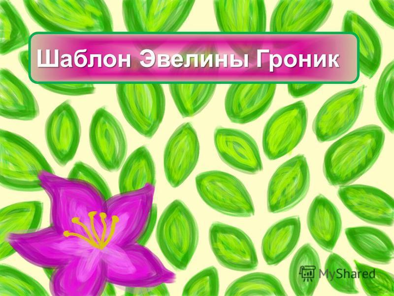 Шаблон Эвелины Гроник