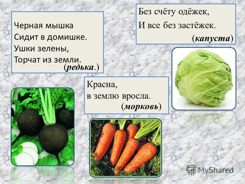 Черная мышка Сидит в домишке. Ушки зелены, Торчат из земли. Без счёту одёжек, И все без застёжек. Красна, в землю вросла. (редька.) (капуста) (морковь)