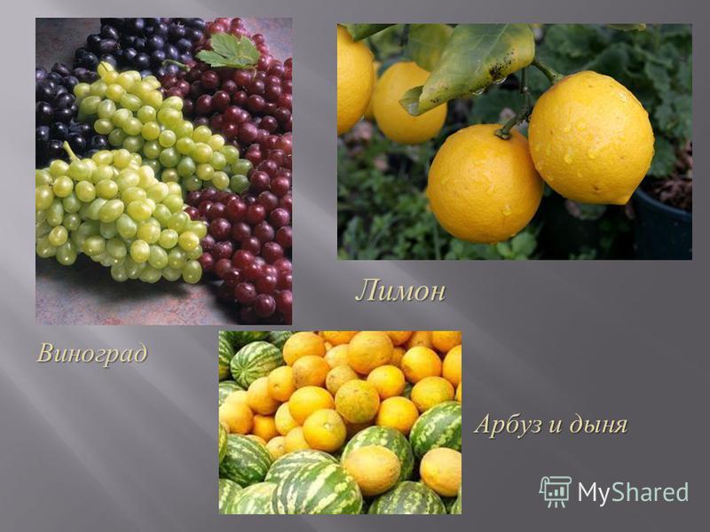 Виноград Лимон Арбуз и дыня