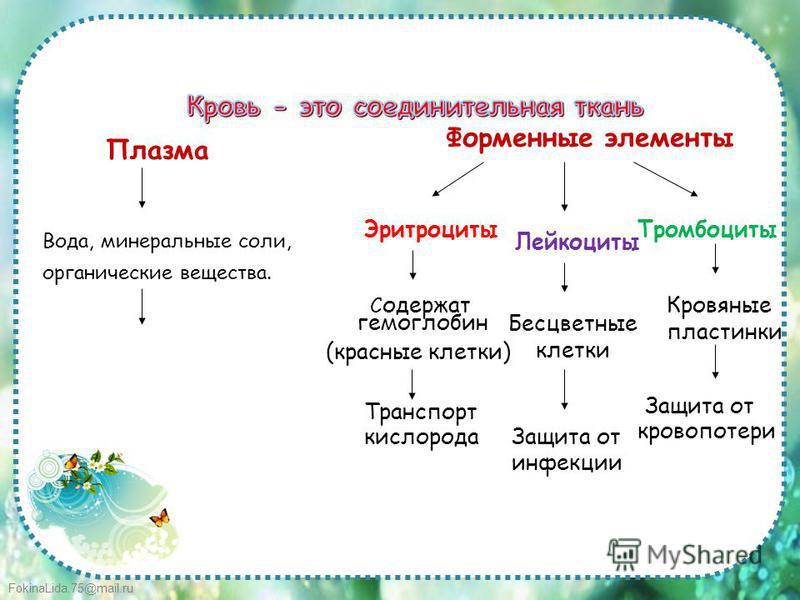 FokinaLida.75@mail.ru Плазма Форменные элементы Эритроциты Лейкоциты Тромбоциты Вода, минеральные соли, органические вещества. С одержат гемоглобин (красные клетки) Бесцветные клетки Кровяные пластинки Транспорт кислорода Защита от инфекции Защита от