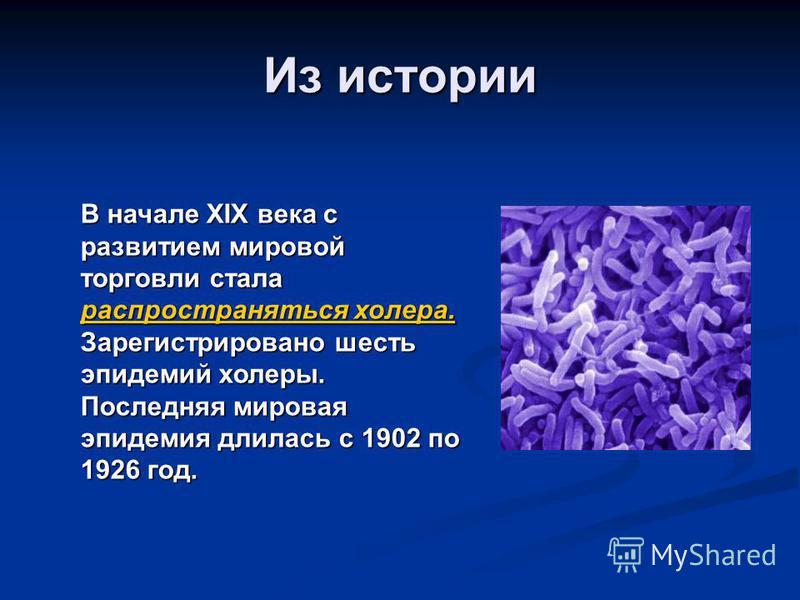 Из истории В начале XIX века с развитием мировой торговли стала распространяться холера. Зарегистрировано шесть эпидемий холеры. Последняя мировая эпидемия длилась с 1902 по 1926 год.