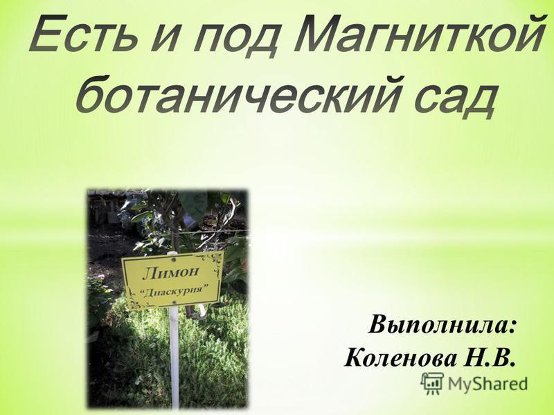 Выполнила: Коленова Н.В.