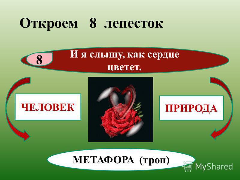 ЧЕЛОВЕК ПРИРОДА Откроем 8 лепесток И я слышу, как сердце цветет. 8 МЕТАФОРА (троп)