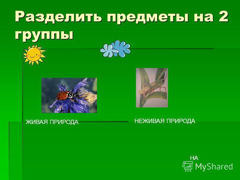 Разделить предметы на 2 группы ЖИВАЯ ПРИРОДА НЕЖИВАЯ ПРИРОДА НА