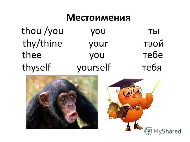 thou /you thy/thine you your ты твой Местоимения thee you тебе thyself yourself тебя
