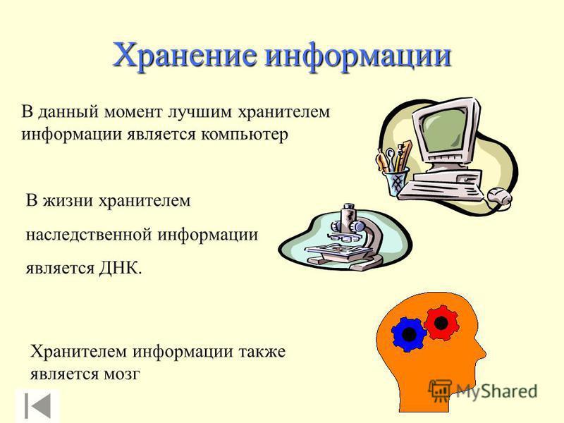 Хранение информации В данный момент лучшим хранителем информации является компьютер В жизни хранителем наследственной информации является ДНК. Хранителем информации также является мозг
