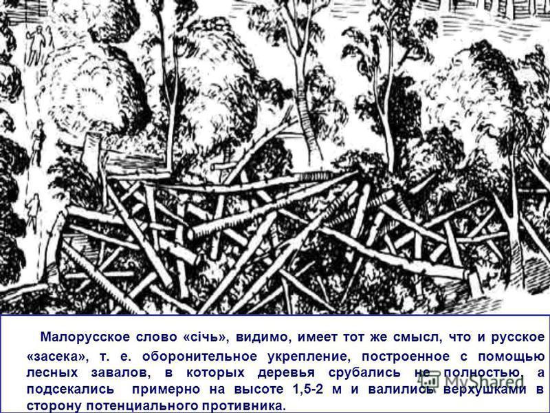 Малорусское слово «січь», видимо, имеет тот же смысл, что и русское «засека», т. е. оборонительное укрепление, построенное с помощью лесных завалов, в которых деревья срубались не полностью, а подсекались примерно на высоте 1,5-2 м и валились верхушк