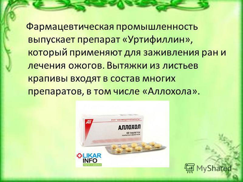 Фармацевтическая промышленность выпускает препарат «Уртифиллин», который применяют для заживления ран и лечения ожогов. Вытяжки из листьев крапивы входят в состав многих препаратов, в том числе «Аллохола».