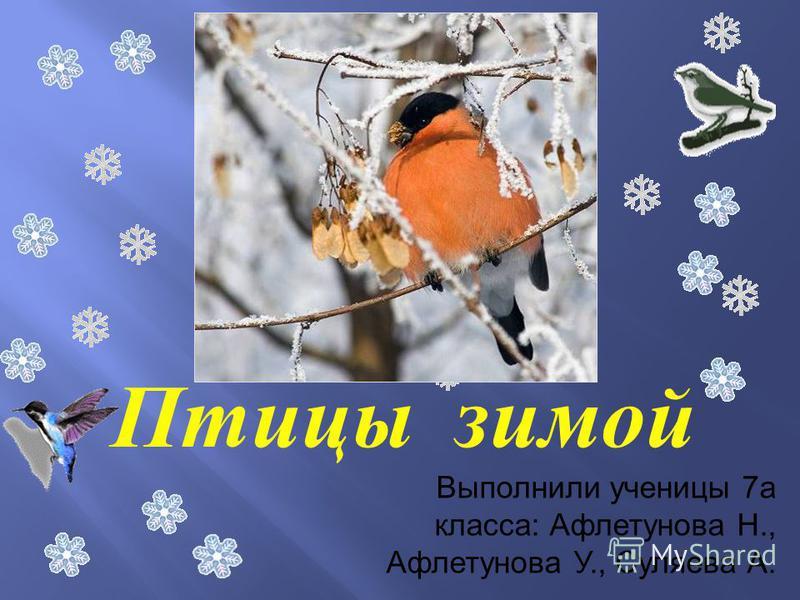 Птицы зимой Выполнили ученицы 7 а класса: Афлетунова Н., Афлетунова У., Суляева А.