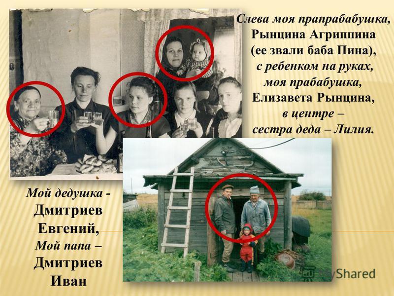 Слева моя прапрабабушка, Рынцина Агриппина (ее звали баба Пина), с ребенком на руках, моя прабабушка, Елизавета Рынцина, в центре – сестра деда – Лилия. Мой дедушка - Дмитриев Евгений, Мой папа – Дмитриев Иван
