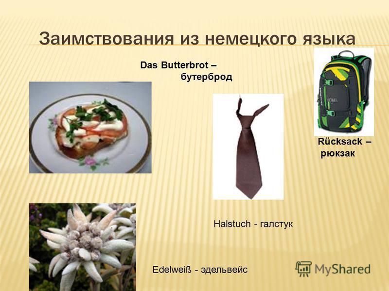 Заимствования из немецкого языка Das Butterbrot – бутерброд Rücksack – рюкзак Halstuch - галстук Edelweiß - эдельвейс