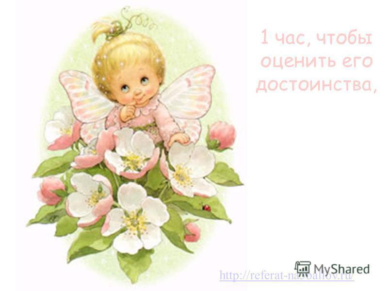1 час, чтобы оценить его достоинства, http://referat-na5ballov.ru/
