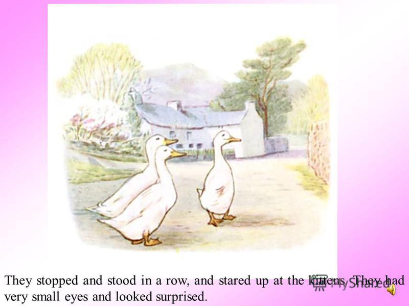 While they were in difficulties, there was a pit pat paddle pat! and the three Puddle-Ducks came along the hard high road, marching one behind the other and doing the goose steppit pat paddle pat! pit pat waddle pat!