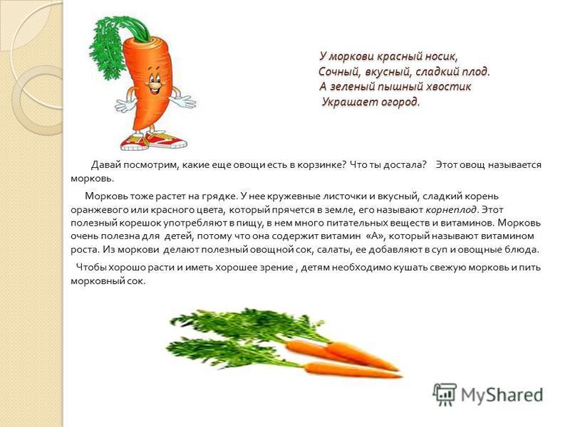 У моркови красный носик, Сочный, вкусный, сладкий плод. А зеленый пышный хвостик Украшает огород. У моркови красный носик, Сочный, вкусный, сладкий плод. А зеленый пышный хвостик Украшает огород. Давай посмотрим, какие еще овощи есть в корзинке ? Что