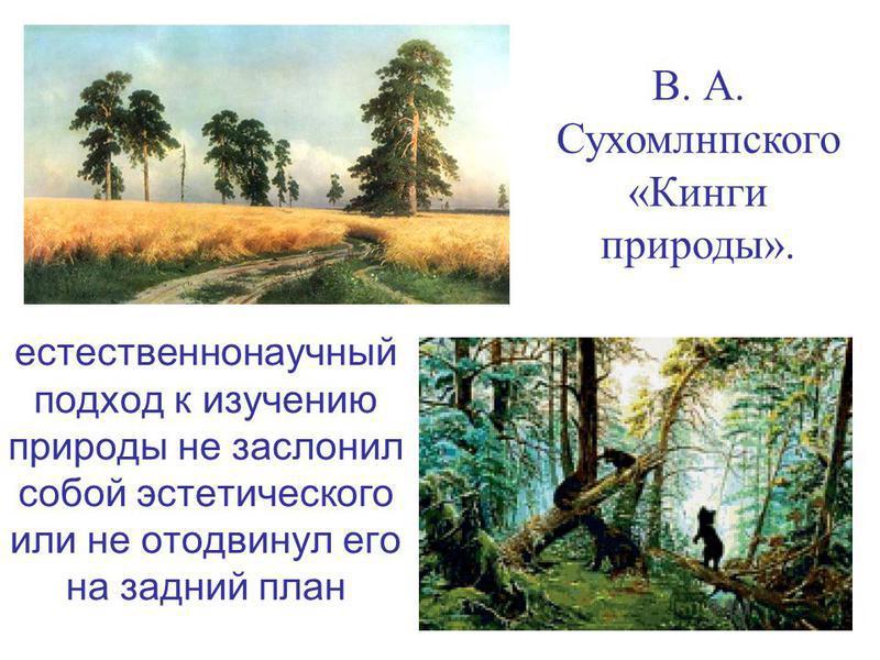 естественнонаучный подход к изучению природы не заслонил собой эстетического или не отодвинул его на задний план В. А. Сухомлнпского «Кинги природы».