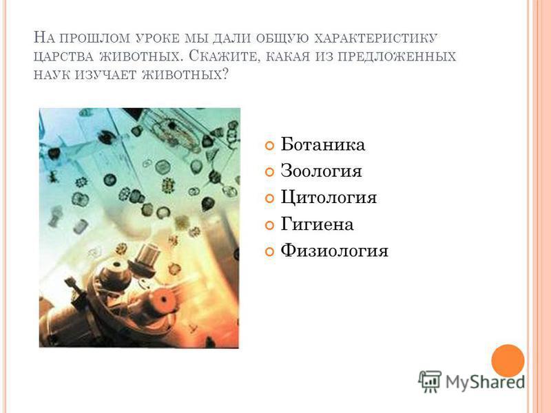 Н А ПРОШЛОМ УРОКЕ МЫ ДАЛИ ОБЩУЮ ХАРАКТЕРИСТИКУ ЦАРСТВА ЖИВОТНЫХ. С КАЖИТЕ, КАКАЯ ИЗ ПРЕДЛОЖЕННЫХ НАУК ИЗУЧАЕТ ЖИВОТНЫХ ? Ботаника Зоология Цитология Гигиена Физиология