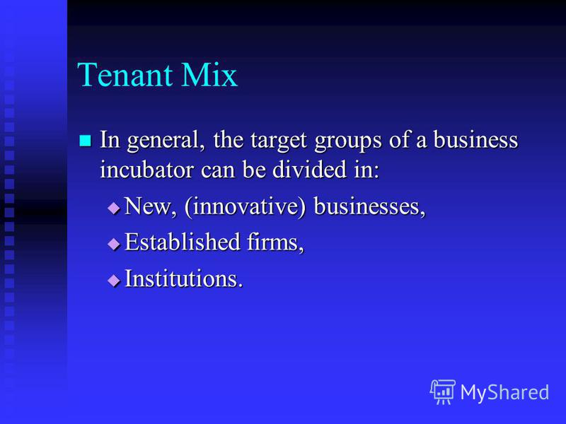 Tenant Mix In general, the target groups of a business incubator can be divided in: In general, the target groups of a business incubator can be divided in: New, (innovative) businesses, New, (innovative) businesses, Established firms, Established fi