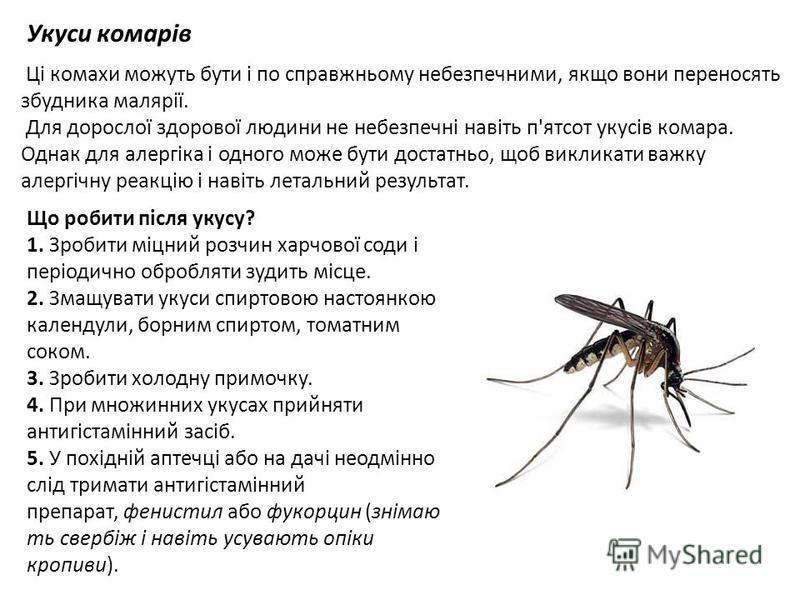 Укуси комарів Ці комахи можуть бути і по справжньому небезпечними, якщо вони переносять збудника малярії. Для дорослої здорової людини не небезпечні навіть п'ятсот укусів комара. Однак для алергіка і одного може бути достатньо, щоб викликати важку ал