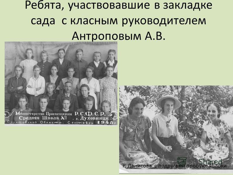 Ребята, участвовавшие в закладке сада с классным руководителем Антроповым А.В. Р. Денисова с подругами пробуют яблоки