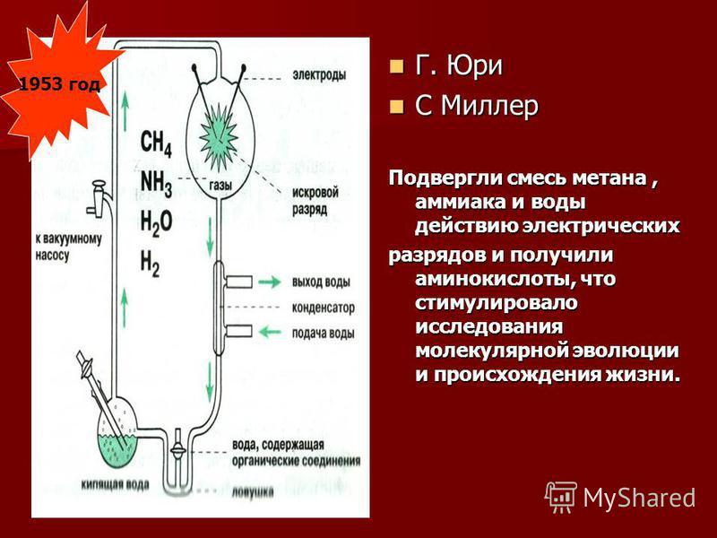 1953 год Г. Юри Г. Юри С Миллер С Миллер Подвергли смесь метана, аммиака и воды действию электрических разрядов и получили аминокислоты, что стимулировало исследования молекулярной эволюции и происхождения жизни.