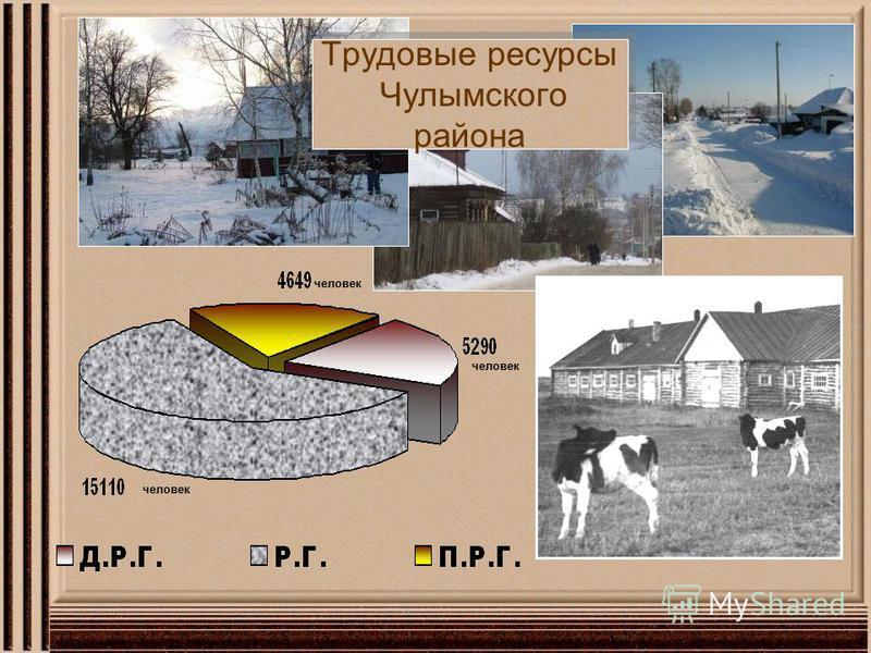 Трудовые ресурсы Чулымского района человек