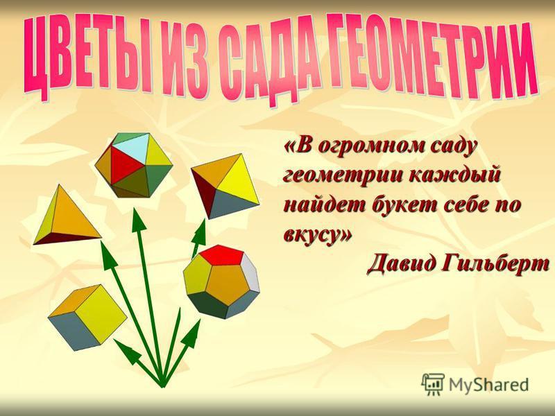 «В огромном саду геометрии каждый найдет букет себе по вкусу» Давид Гильберт