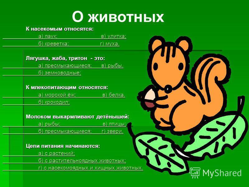 К насекомым относятся: К насекомым относятся: а) паук; в) улитка; а) паук; в) улитка; б) креветка; г) муха. б) креветка; г) муха. Лягушка, жаба, тритон - это: Лягушка, жаба, тритон - это: а) пресмыкающиеся; в) рыбы. а) пресмыкающиеся; в) рыбы. б) зем