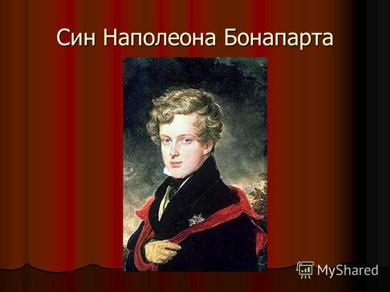 Син Наполеона Бонапарта