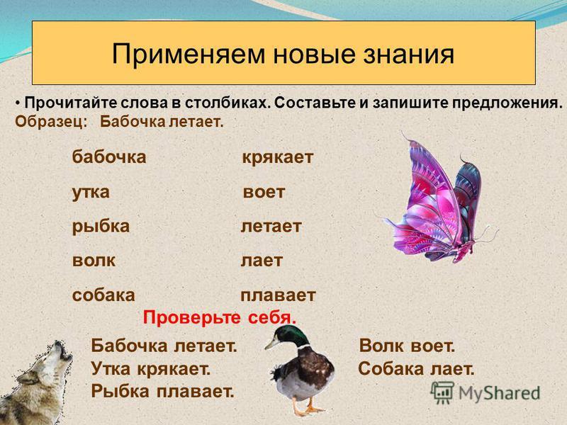 Применяем новые знания Прочитайте слова в столбиках. Составьте и запишите предложения. Образец: Бабочка летает. бабочка крякает утка воет рыбка летает волк лает собака плавает Проверьте себя. Бабочка летает. Волк воет. Утка крякает. Собака лает. Рыбк