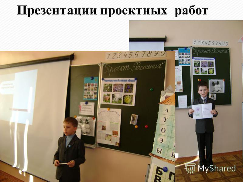 Презентации проектных работ