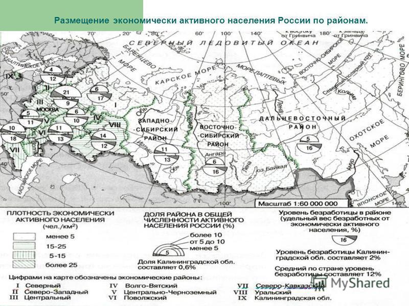 Размещение экономически активного населения России по районам.