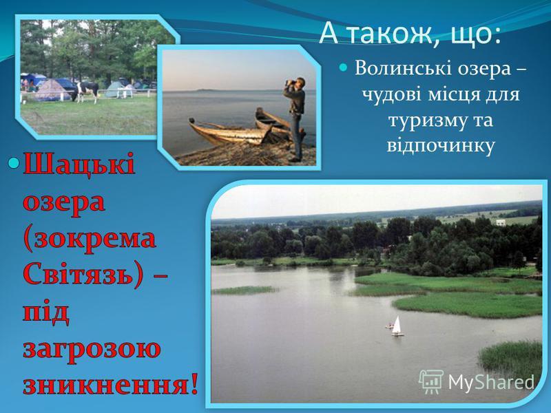 А також, що: Волинські озера – чудові місця для туризму та відпочинку
