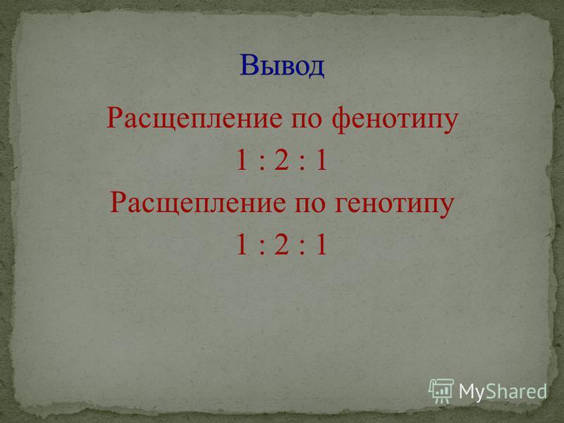 Расщепление по фенотипу 1 : 2 : 1 Расщепление по генотипу 1 : 2 : 1