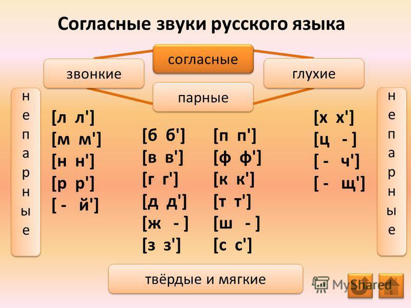 Согласные звуки русского языка [л л'] [м м'] [н н'] [р р'] [ - й'] согласные парные звонкие глухие твёрдые и мягкие не парные непарные не парные непарные не парные непарные не парные непарные [х х'] [ц - ] [ - ч'] [ - щ'] [б б'] [в в'] [г г'] [д д']