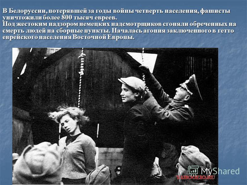 В Белоруссии, потерявшей за годы войны четверть населения, фашисты уничтожили более 800 тысяч евреев. Под жестоким надзором немецких надсмотрщиков сгоняли обреченных на смерть людей на сборные пункты. Началась агония заключенного в гетто еврейского н