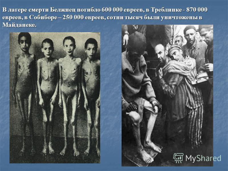 В лагере смерти Белжнец погибло 600 000 евреев, в Треблинке - 870 000 евреев, в Собиборе – 250 000 евреев, сотни тысяч были уничтожены в Майданеке.