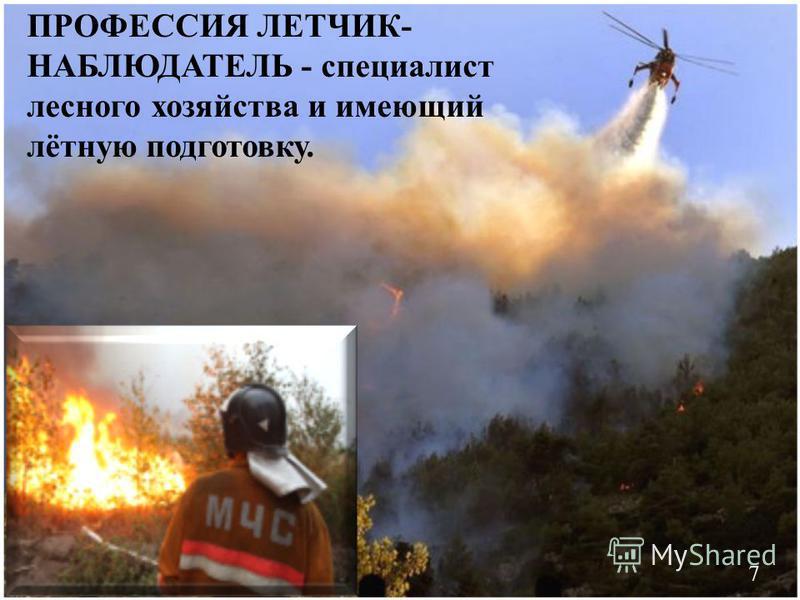ПРОФЕССИЯ ЛЕТЧИК- НАБЛЮДАТЕЛЬ - специалист лесного хозяйства и имеющий лётную подготовку. 7