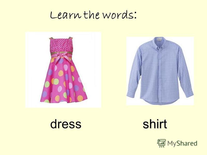 Learn the words : dressshirt