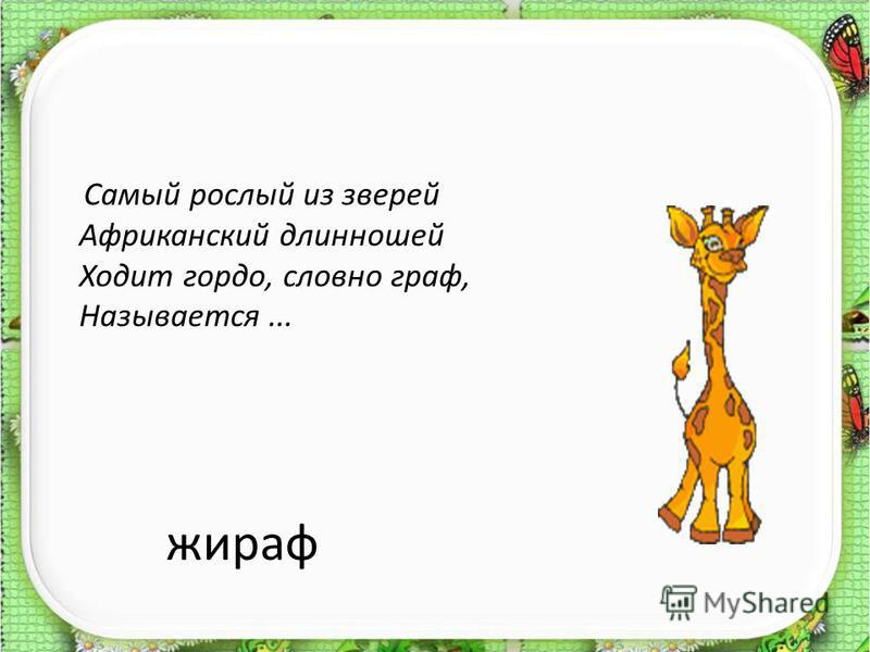 жираф Самый рослый из зверей Африканский длинношей Ходит гордо, словно граф, Называется...